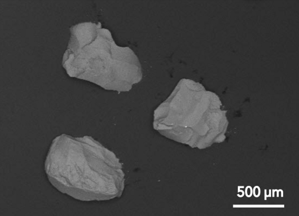 Bioglass bone graft at magnification showing smooth surface.