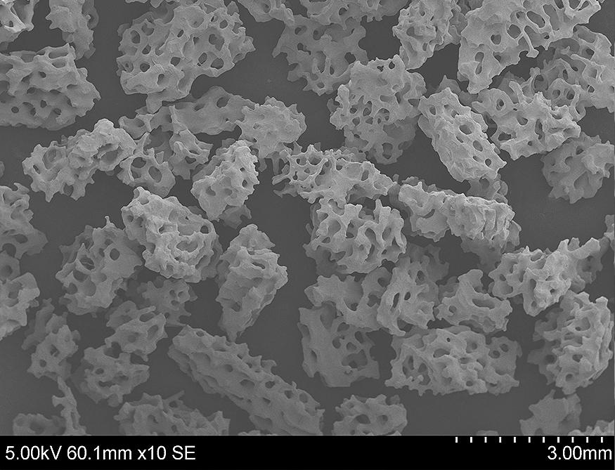 bone graft granules with biomimetic porosity
